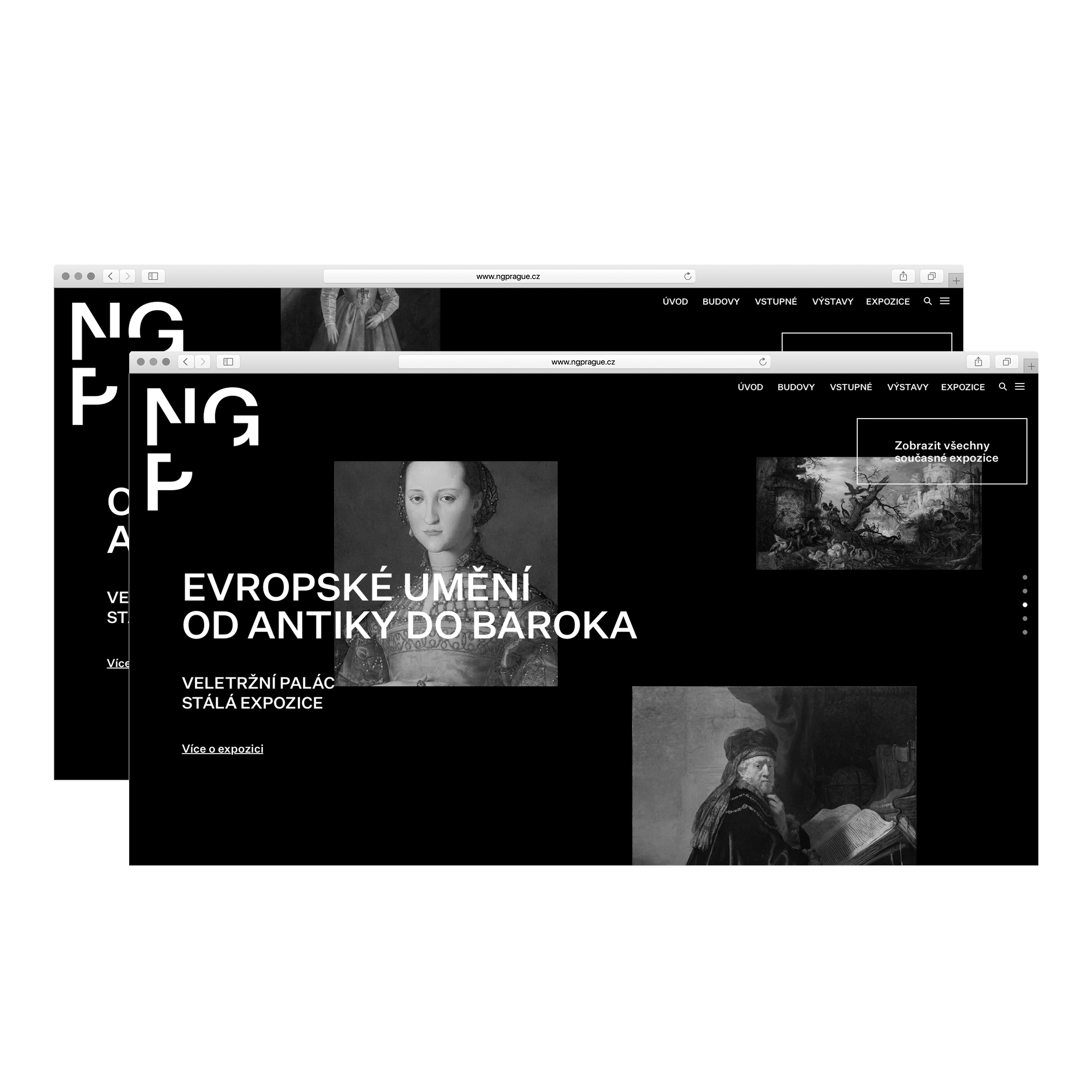 NGP – website concepts