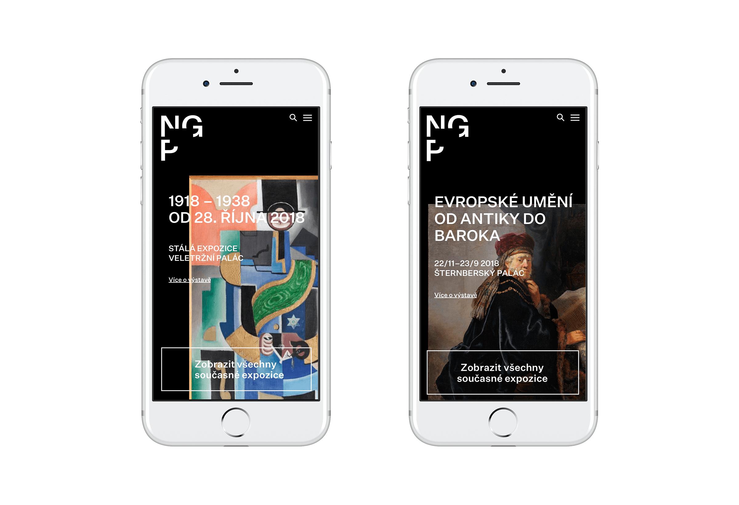 NGP_Web_mobile_2